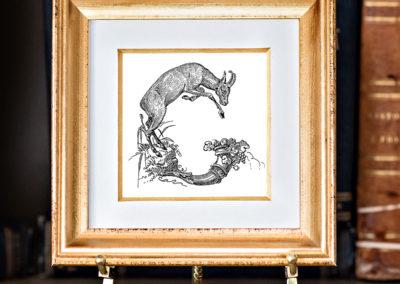 G-4 Silvestre.frame