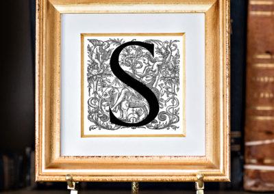 S-3 Vignon.frame
