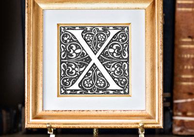 X-1 Tory.frame